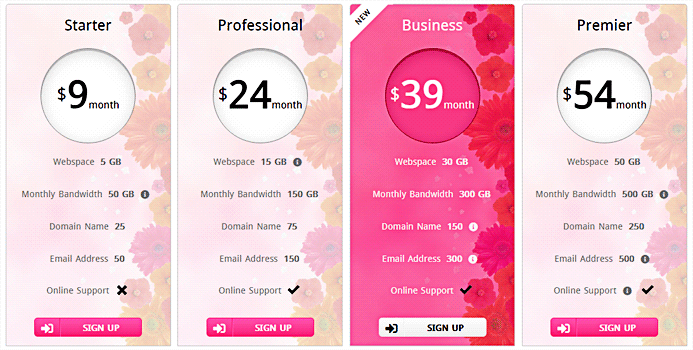 Responsive CSS3 Pricing Table - 1